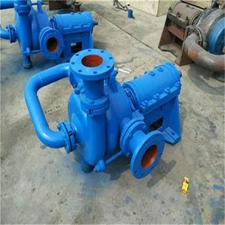 压滤机渣浆泵 压滤机专用泵 ZJW型压滤机专用泵 辰龙泵业