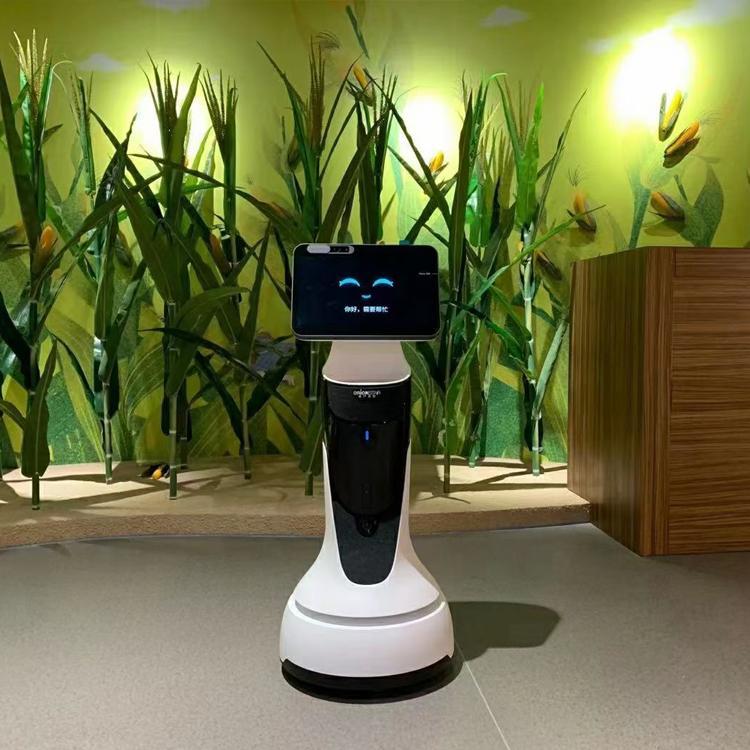 出租服务机器人