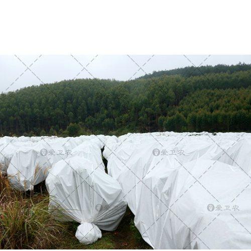 混凝土防冻布规格 爱卫农 室外盖花防冻布供应商