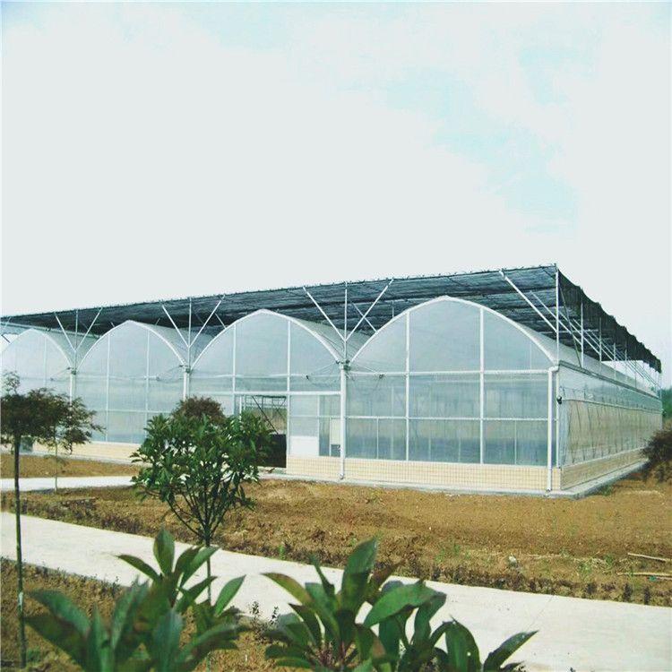 金纳 恒温光伏薄膜大棚生产公司 文洛式新型薄膜大棚建设厂家