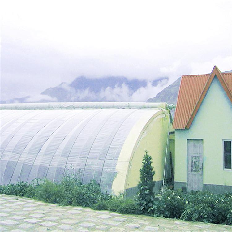 圆拱形智能薄膜连栋温室大棚专业施工队 就找旭航