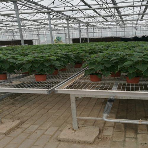 塑料移动灌溉苗床配件