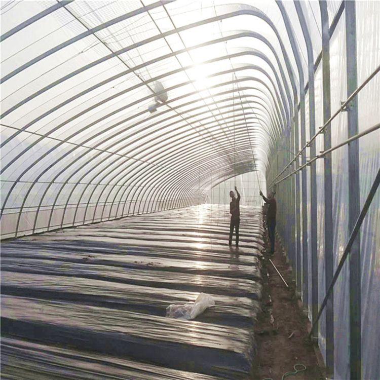 双拱双膜薄膜大棚建设厂家 双层蔬菜薄膜大棚工程建造 金纳