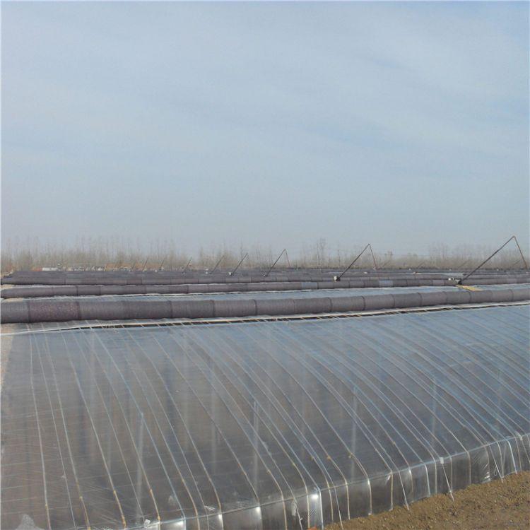 恒温光伏薄膜温室大棚工程建造