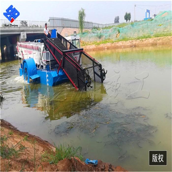 湖南株洲水花生打捞船水葫芦船打捞水葫芦船中行的 海德瀛