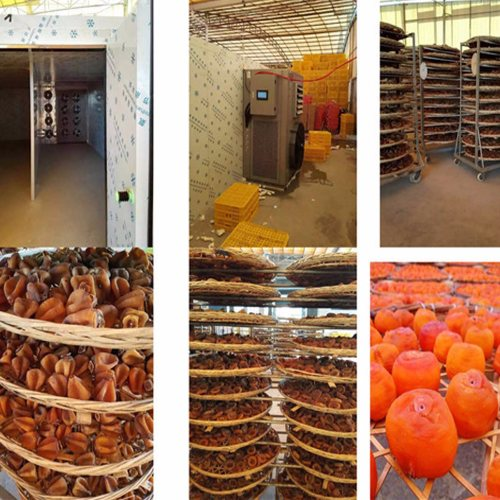花卉热泵干燥机 节能热泵干燥机 中科巨能 蔬菜热泵干燥机