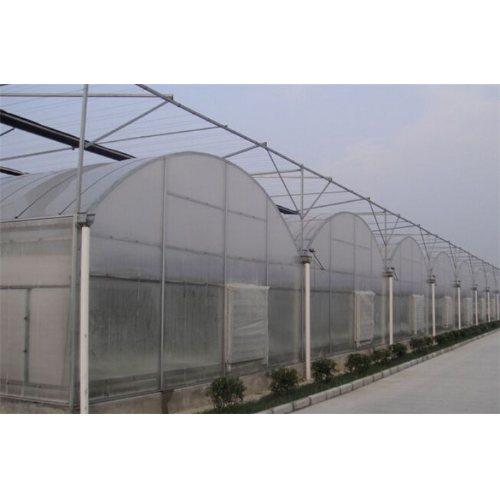 定制连栋薄膜温室大棚造价 连栋薄膜温室大棚 凯泽