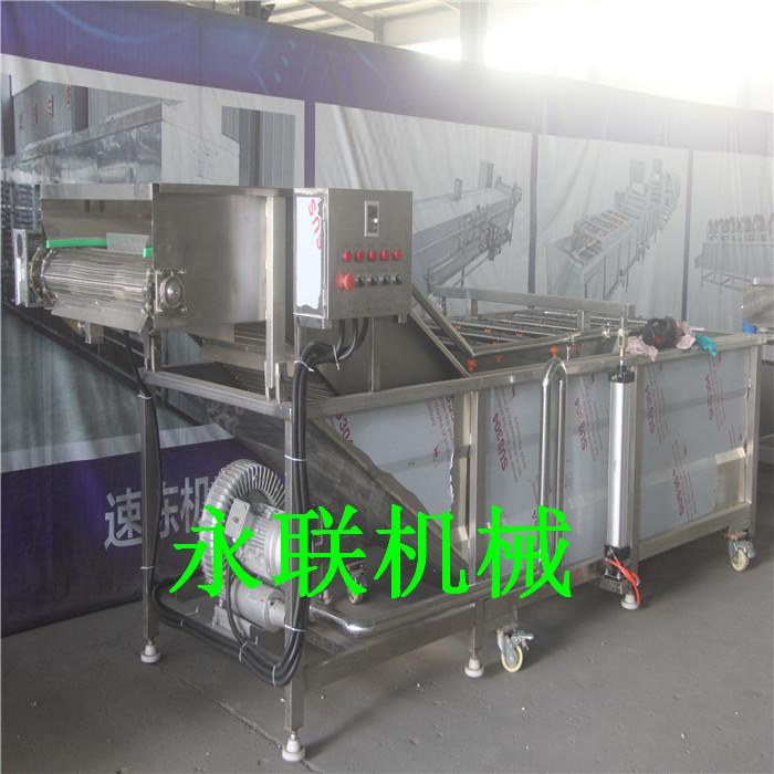 土豆片气泡清洗机 莲藕鼓泡清洗机 自动清洗去淀粉果蔬加工设备