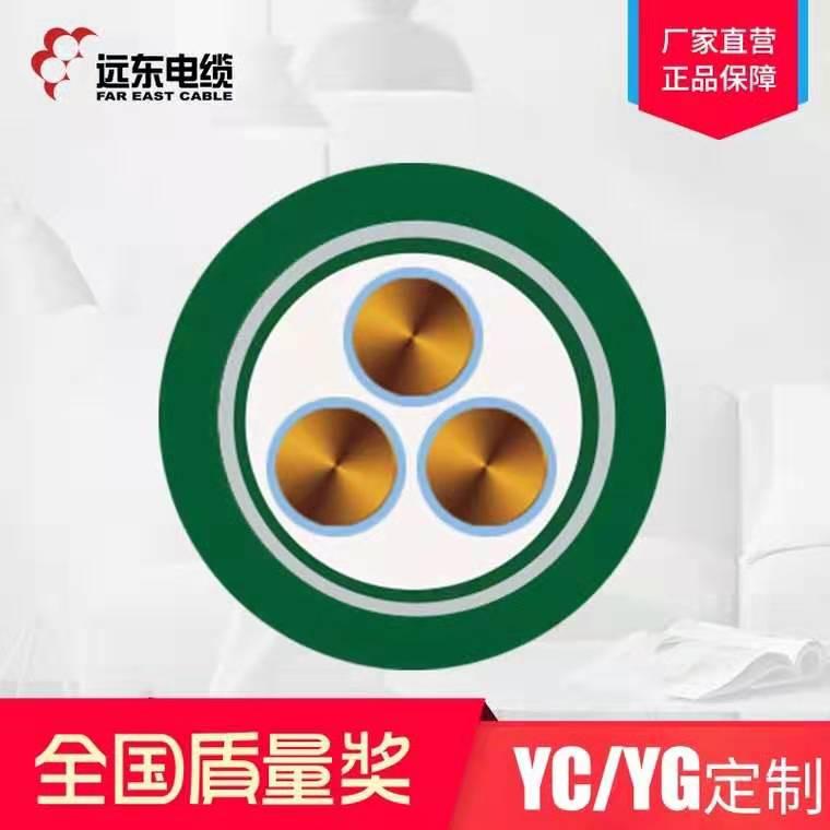 阿坝远东电缆经销商 中国企业500强