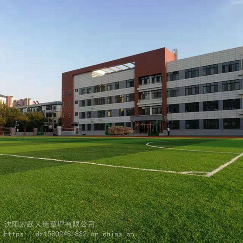 宏跃人造草坪工厂国标单丝508800D足球场人造草坪销售、施工质量保证、交期准时