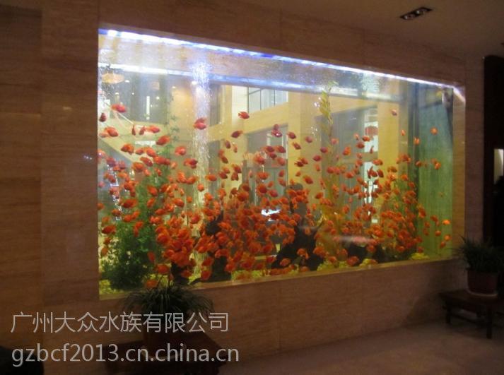 广州鱼缸公司广州鱼缸订做嵌墙式鱼缸广州订做观赏嵌墙式鱼缸广州嵌墙式鱼缸造景设计广州鱼缸批发