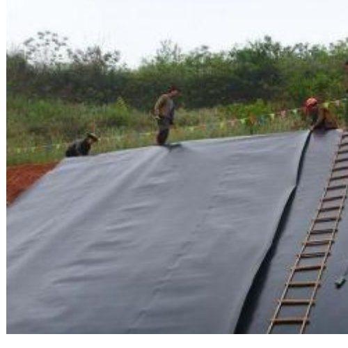 HDPE土工膜 隧道双凸点土工膜指标 泰安兴拓