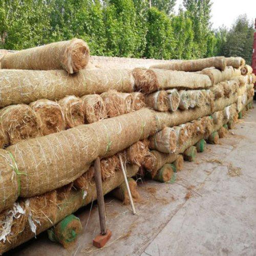 商家供应麻椰毯播种程序 河道护坡麻椰毯生产基地 通佳