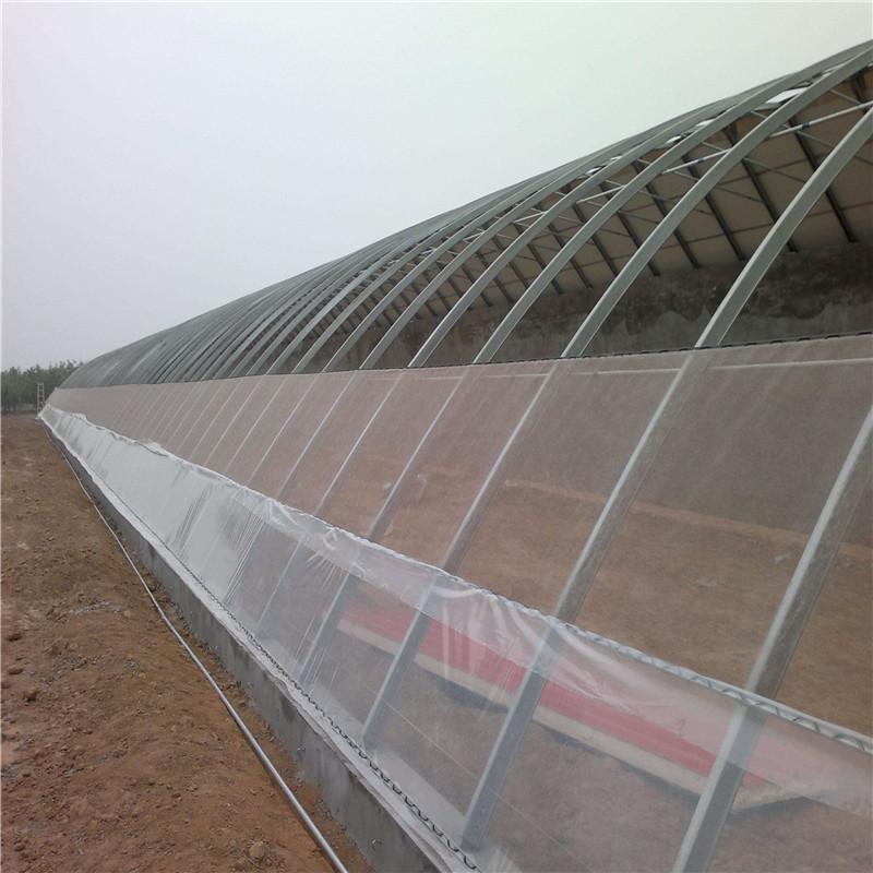 圆拱形智能薄膜温室大棚建设厂家 薄膜温室大棚专业施工队 金纳