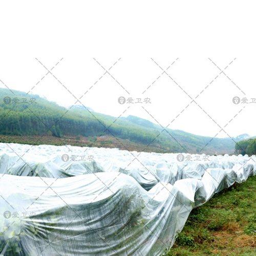 室外盖花防冻布企业 爱卫农 沙糖桔果树防冻布生产商