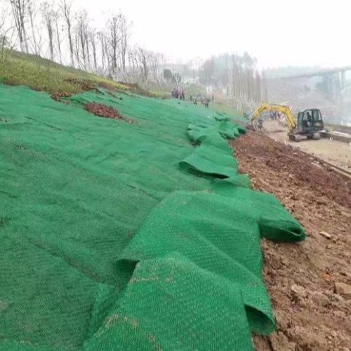 边坡网垫图片 绿化网垫销售 大广新材料 网垫量大从优