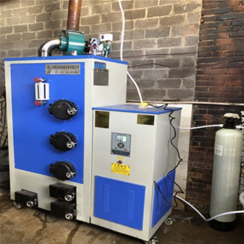 昆明生物质锅炉环保节能 天成 300斤生物质锅炉环保节能