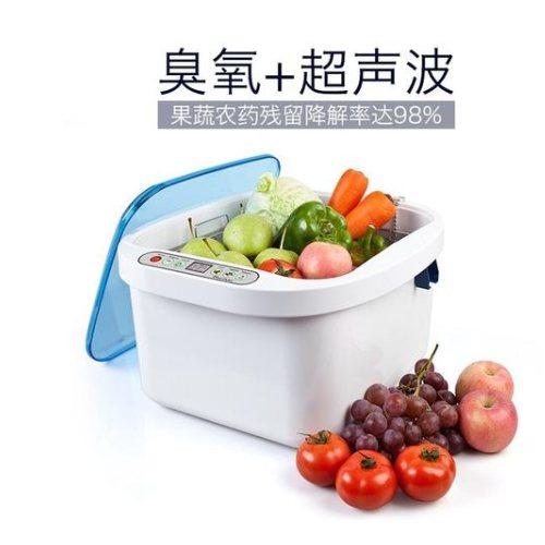 全自动家用洗菜机果蔬杀菌消毒蓝奥臭氧洗菜机