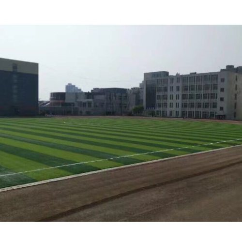 加工生产幼儿园草坪现货供应 林柯 加工定制幼儿园草坪量大从优