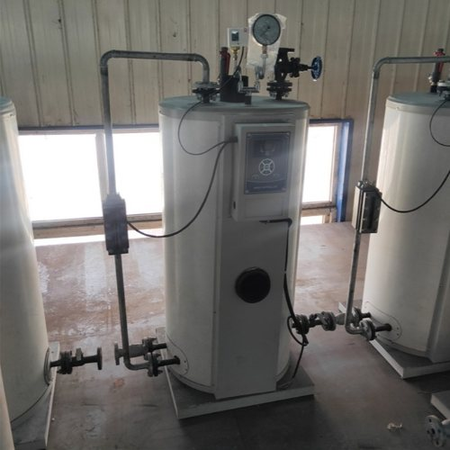 隆鑫 桑拿生物质蒸汽发生器功能 卧式生物质蒸汽发生器优点