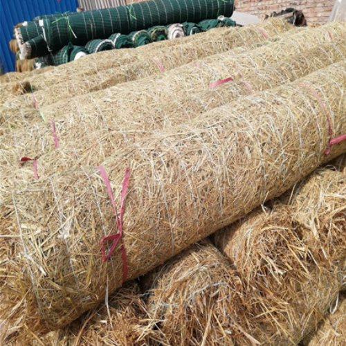 定制加工环保草毯市场报价 矿区绿化环保草毯市场行情 通佳
