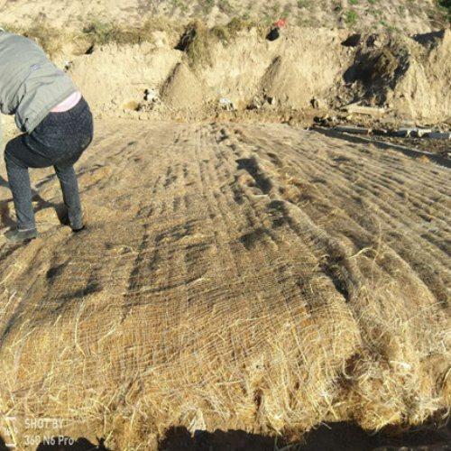 植生草毯防护工程 通佳 高速公路护坡植生草毯抗老化