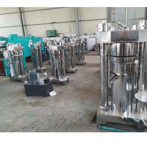 新型菜籽榨油机 大型菜籽榨油机产量 鼎诺机械
