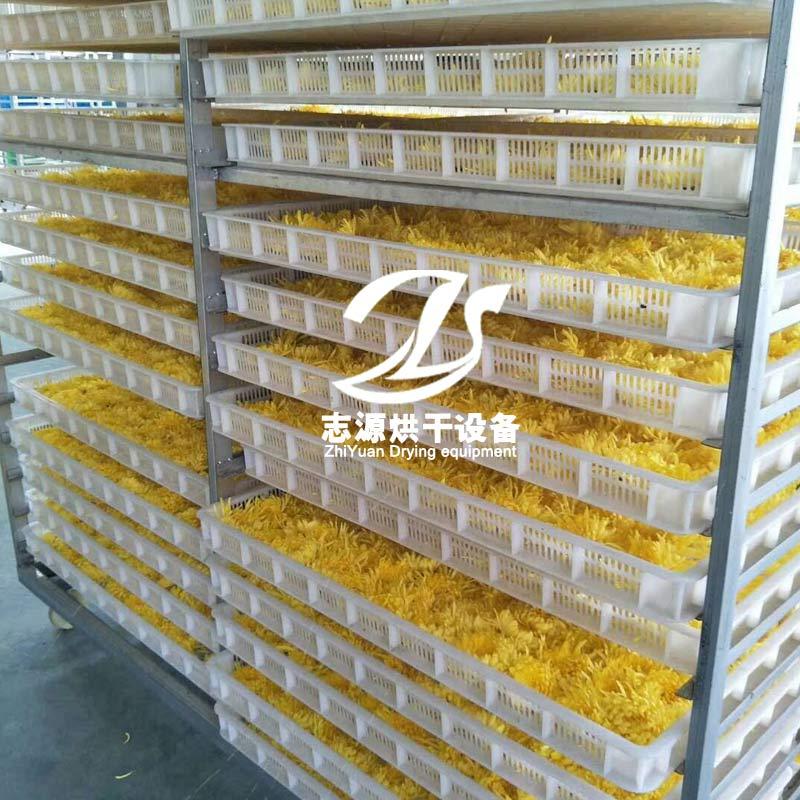 菊花烘干机制造厂家 金丝皇菊干燥设备 质量优良