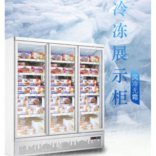 冷冻柜 冷冻柜定制