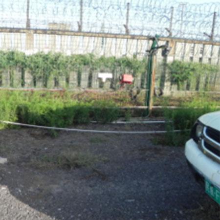 机场专用驱鸟器 果园 厂家 驱鸟器
