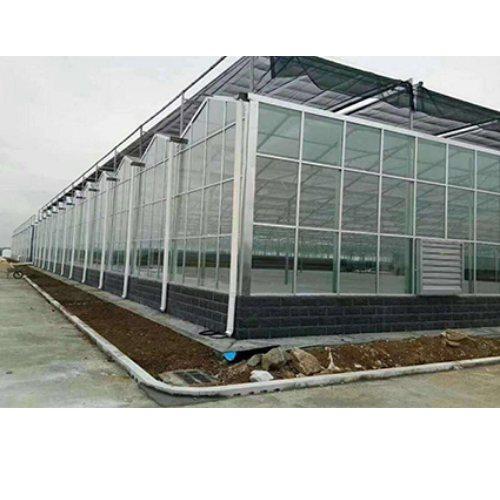 绿盾温室 定做玻璃大棚 专业生产玻璃大棚质量