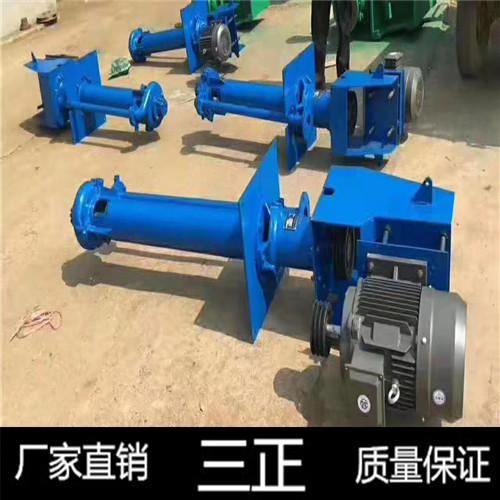 矿场液下渣浆泵 矿场液下渣浆泵定制 液下渣浆泵 三正