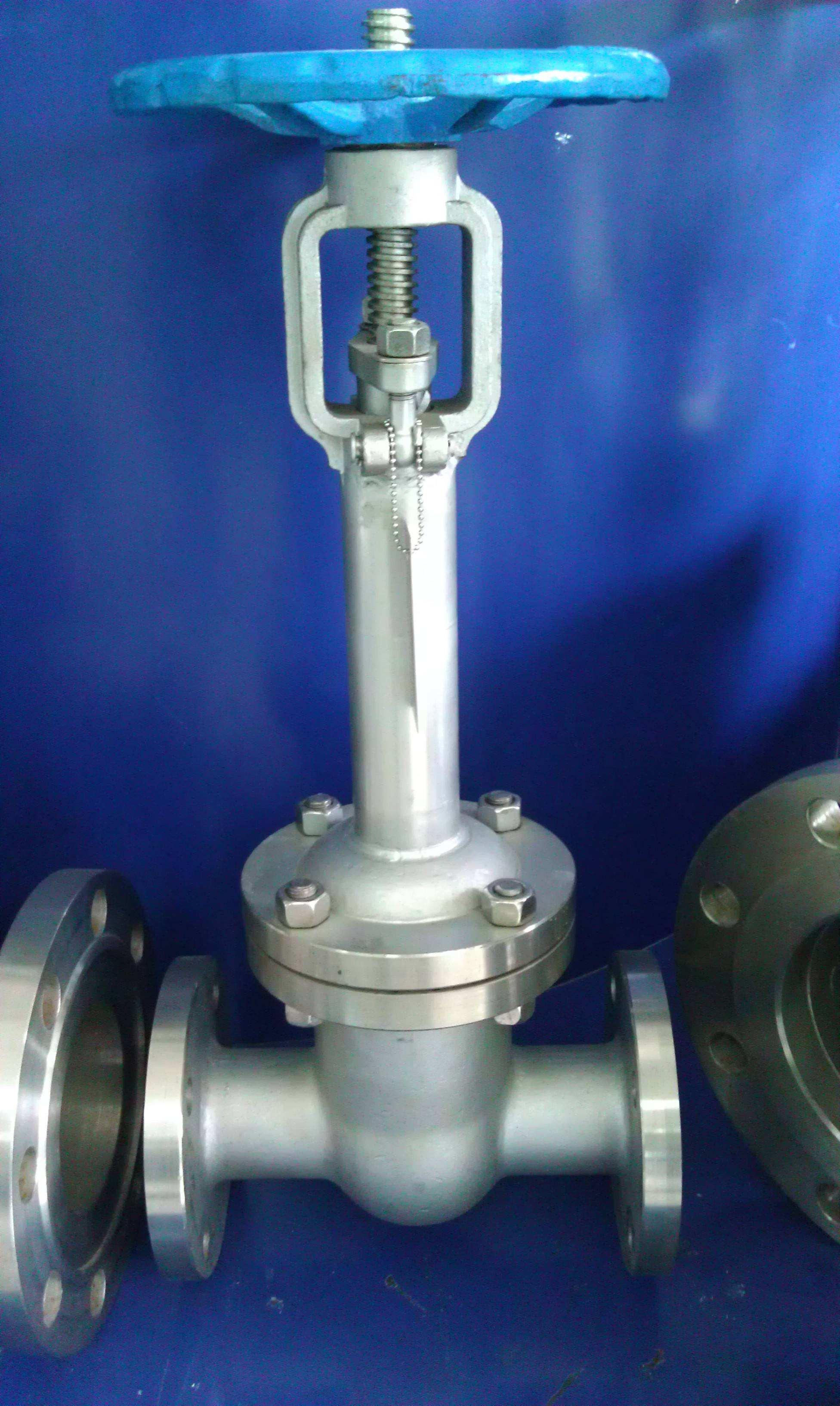 进口低温不锈钢焊接截止阀