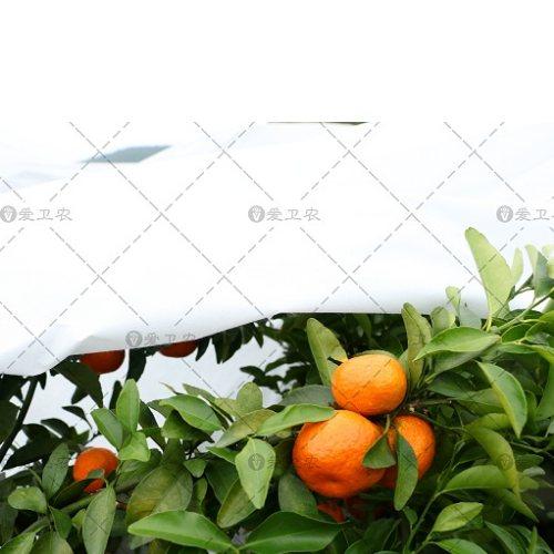 冬季花卉用防寒布生产商 爱卫农 淘宝网门帘防寒布供应商