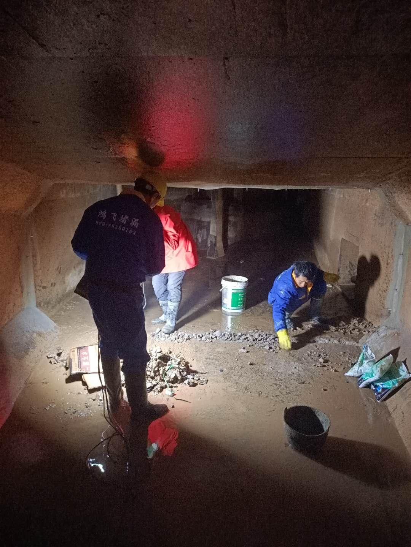 陕西水电站堵漏方案 水电站渗漏水维修 工程质量认可度高