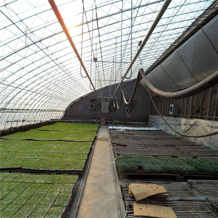 智能大棚产品报价 七洲 蔬菜种植智能大棚建造单位