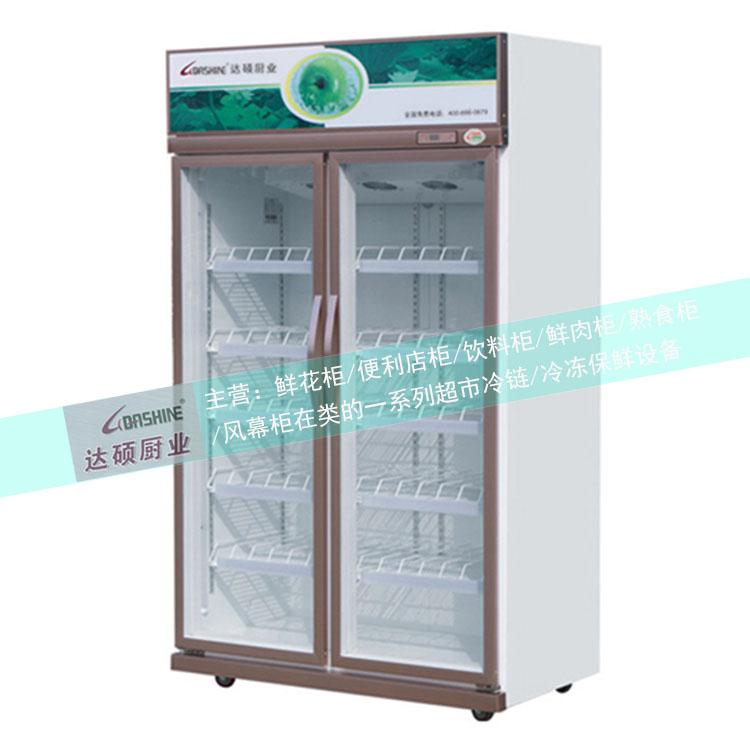 饮料冷冻柜 饮料冷冻柜品牌 超市饮料冷冻柜 达硕