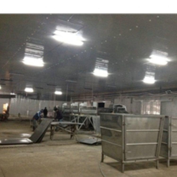 销售豆芽机操作 销售豆芽机维修 豆芽王机械 销售豆芽机生产线