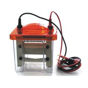 双胶迷你垂直电泳槽VE-180高透明度的PMMA槽体可跑单胶、双胶JSS/金时速