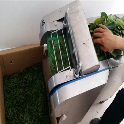 丰雷益 大型自动切菜 自动切菜机厂家报价