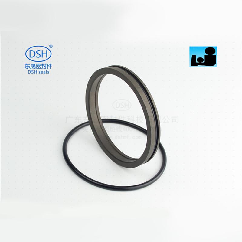 双O型组合防尘圈DPR