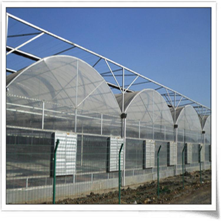 七洲 镀锌管连栋温室工程建造 锯齿形连栋温室专业团队