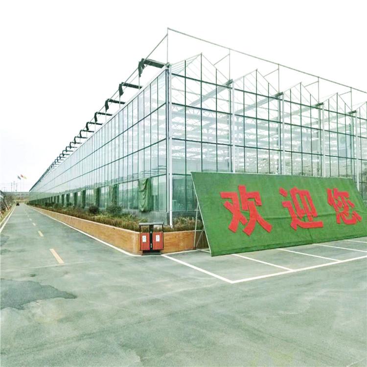 金纳 旅游景观玻璃大棚建筑商 钢构钢化玻璃大棚建造公司厂家