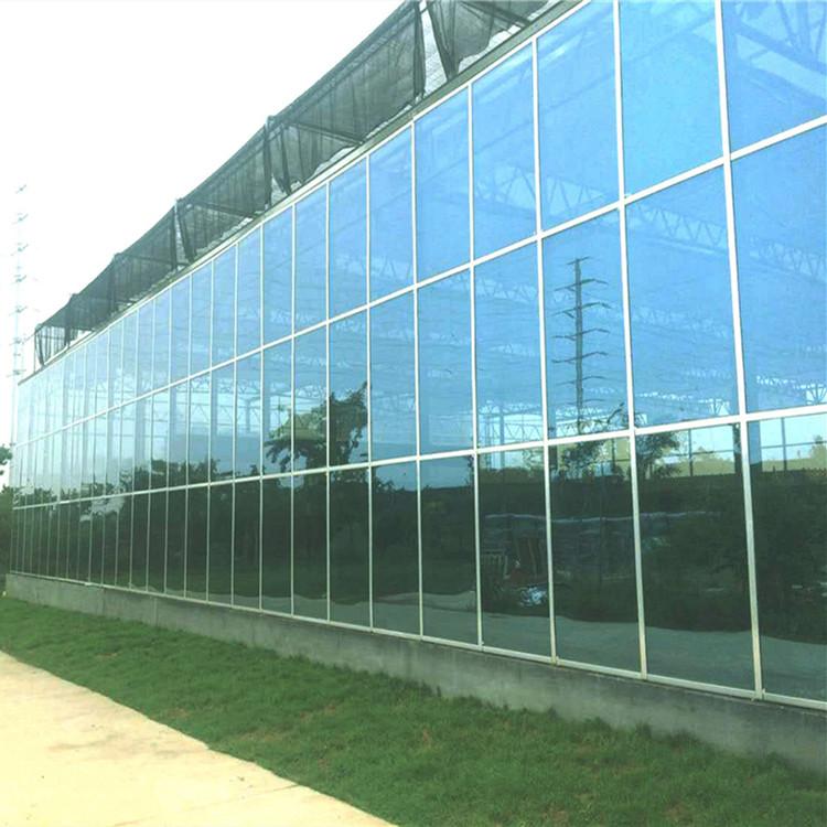 金纳 自动化_玻璃大棚_建筑商 专业设计建造_玻璃大棚_安装施工
