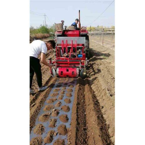 旋耕起垄施肥铺膜打孔打药一体机
