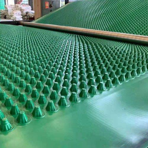 兴拓 排水板塑料蓄排水板 抗拉伸排水板规范