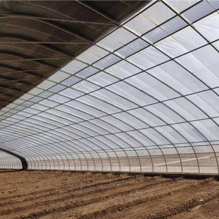温室大棚工程 日光温室大棚设计 安装温室大棚工程 贵贵温室