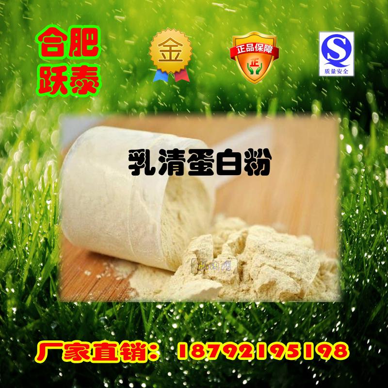 乳清蛋白粉工厂批发