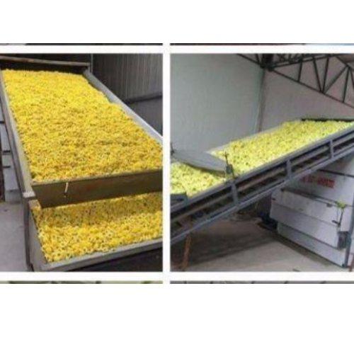 桑葚干燥机专业定制生产 海产品干燥机设备公司 山东宝阳
