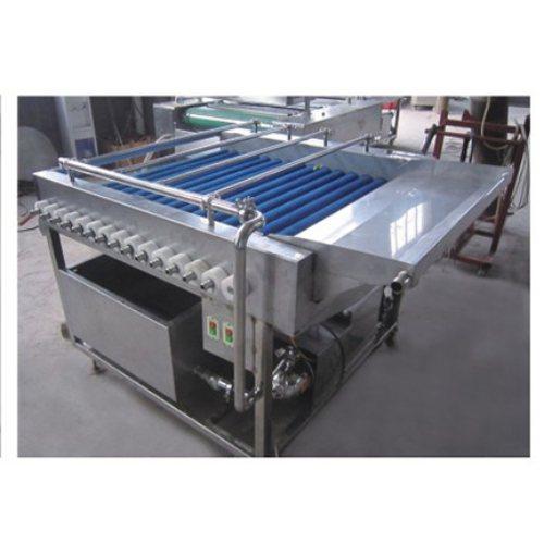 DD 食用菌清洗设备 蔬菜清洗设备厂家